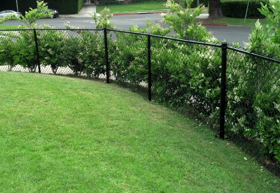 Home Chain Linked Fences